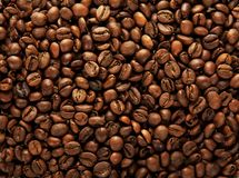 Background of coffee grains Stock Photography
