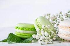Background color white and green of flowers and dessert macaron Stock Image