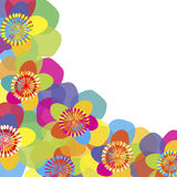 Background with colored flowers and place for text Royalty Free Stock Photos