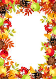 Background with colorful autumn leaves, apples and cones. Vector illustration. Royalty Free Stock Images