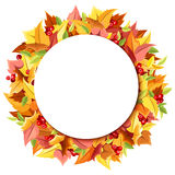 Background with colorful autumn leaves. Vector eps-10. Stock Image