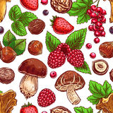 Background with colorful berries, nuts and mushrooms Royalty Free Stock Image