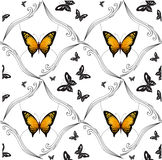 Background of colorful butterflies flying Stock Photography