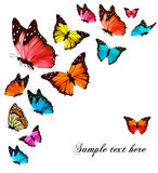 Background with colorful butterflies. Stock Photos