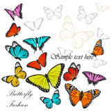 Background with colorful butterflies vector Royalty Free Stock Photos
