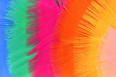 Background with colorful feathers Stock Images