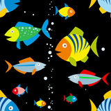 Background of colorful fish. Seamless background of colorful fish and air bubbles on black color Royalty Free Stock Images
