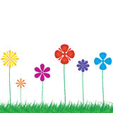 Background with a colorful  flowers . Royalty Free Stock Image