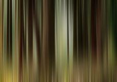 BACKGROUND. Colorful lines from beech forest Stock Photos