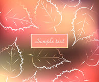 Background with colorful outline fallen leaves, beautiful bright autumn, vector illustration Stock Photography