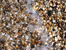 Background from colorful sea pebbles, water and foam. Visible bubbles and sun glare Royalty Free Stock Photography