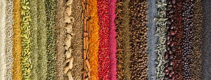 Indian spices and herbs background. colorful seasoning, top view. Background of colorful spices and herbs. Collection of various seasonings royalty free stock image