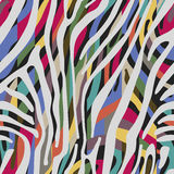 Background with colorful Zebra skin pattern Royalty Free Stock Images