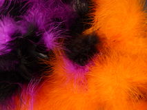 Background - colourful feathers Royalty Free Stock Image