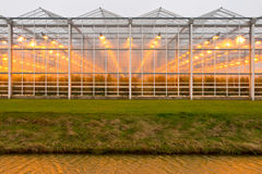 Free Background Commercial Greenhouse Stock Photos - 27473013