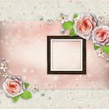 Background for congratulation with beautiful rose Stock Images