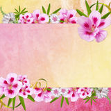 Background for congratulation  card Royalty Free Stock Images