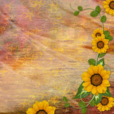 Background for congratulation  card. In scrap-booking style Royalty Free Stock Images