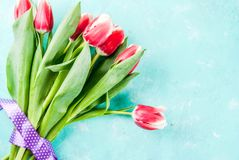 Background with tulip flowers. Background for congratulations, greeting cards. Fresh spring tulips flowers, on light blue background top view copy space Royalty Free Stock Image