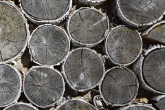Background consisting of pieces of wood. Many circles of cut trees. stock photo
