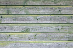 Background consisting of weathered green grey boards Royalty Free Stock Photo