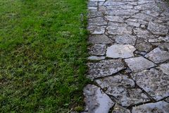 The background consists of half of the green grass, and half of the stone path. After rain stock photo