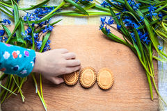 Background with cookies the shape of Easter eggs in the blue snowdrops on a wooden chopping board and a child's hand taking cookie Royalty Free Stock Images