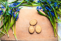 Background with cookies the shape of Easter eggs in the blue snowdrops on a wooden chopping board and a child's hand taking cookie Stock Images