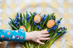 Background with cookies the shape of Easter eggs in the blue snowdrops on yellow kitchen towel and a child's hand taking Stock Photography