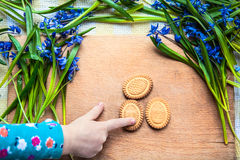 Background with cookies in the shape of Easter eggs in the snowdrops and the finger of a child Stock Image