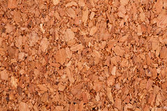 Background. Cork board texture for background, close-up image Royalty Free Stock Photo
