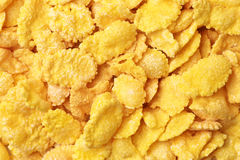 Background of cornflakes. Stock Images