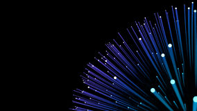 Background: corsage fiber optic. On black background Royalty Free Stock Photos