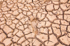 Background of cracked earth Royalty Free Stock Image
