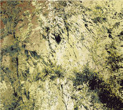 Background of cracked rock structure with dry grass Royalty Free Stock Images