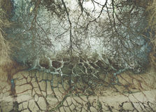 Background with cracks Royalty Free Stock Photography