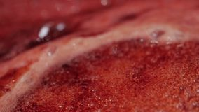 Background of cranberries jam, macro shot. Background of cranberry jam slowly boils. Abstract close-up stock video footage