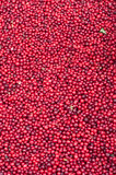 Background of Cranberry. A lot of Cranberry on Copengagen market Stock Images