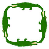Background of the crocodile. Decorative pattern. White field and green crocodiles. Vector Image. Stock Images