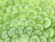Background with cucumbers Royalty Free Stock Image