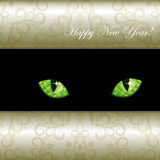 Background with curious emerald eyes of a cat. Royalty Free Stock Photos
