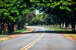 Background: Curve on the road surrounded by trees and green vege Stock Images