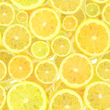 Background of cut across a lot of citrus fruits. Stock Photos
