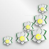 Background of cut paper flowers. Stock Image