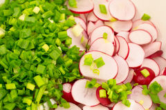 Background of cut radishes and onions Royalty Free Stock Photos