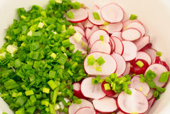 Background of cut radishes and onions in a white plate Stock Photography