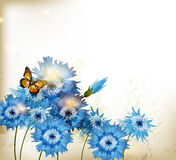 Background with cute blue realistic cornflowers Royalty Free Stock Photography
