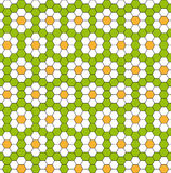 Background with daisies Royalty Free Stock Photo