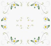 Background with daisies. White abstract background with daisies stock illustration