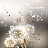 Background with dandelions. Summer wind Royalty Free Stock Photos